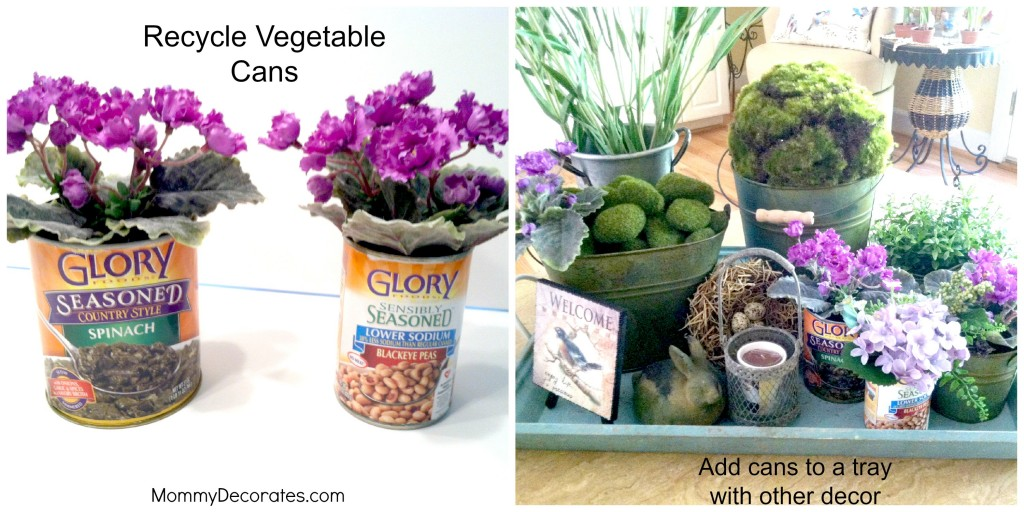 Recycle Vegetable Cans With Tray